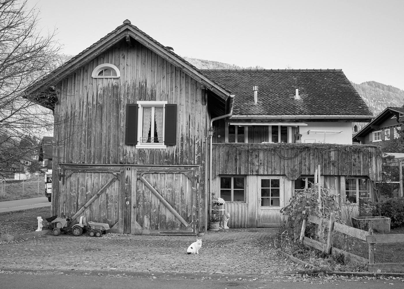 Buch-Maenner-6070